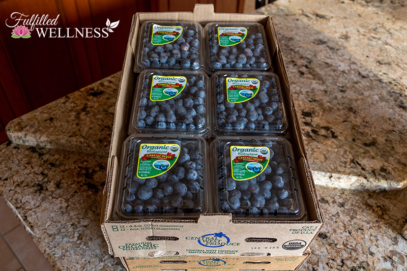 Boxes of Organic Blueberries